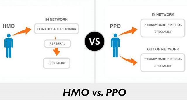 What is The Difference between the PPO and HMO Plan?
